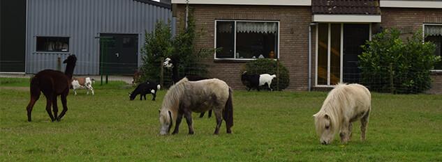 Kinderboerderij Uithoorn